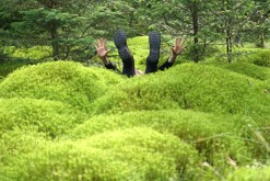 Hupky do mechu / Sotra, Bergen // Jumping into moss